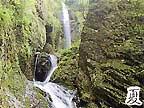 夏 竜化の滝